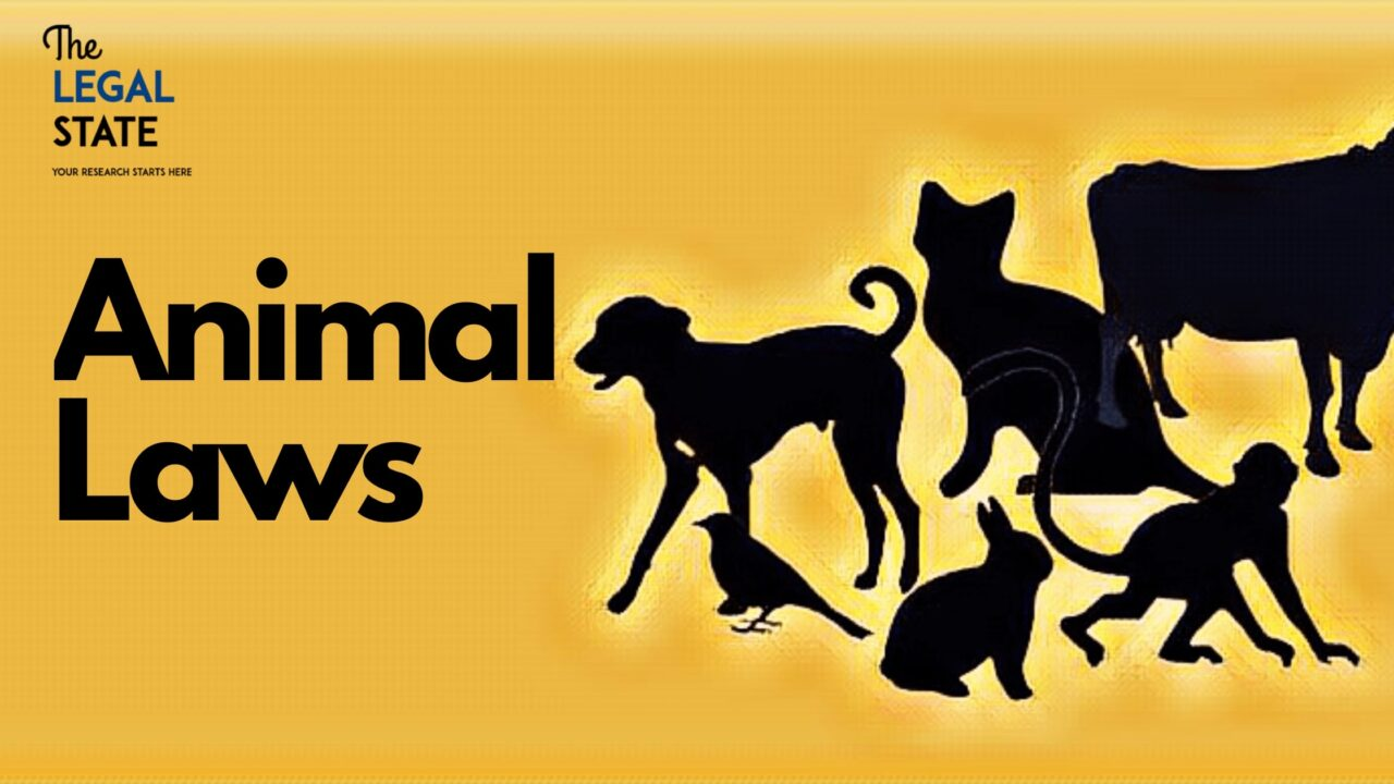 Animal Laws In India