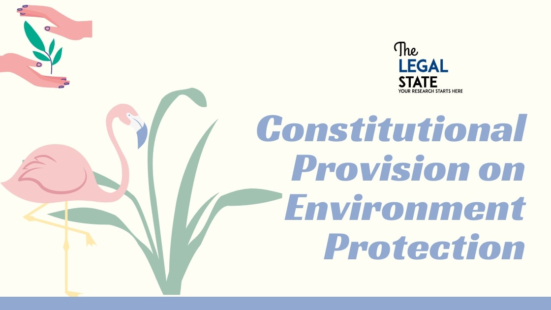 Constitutional Provisions on Environmental Protection